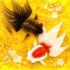 「Wa Kingyo -和金魚-」今日からiPhoneが金魚泳ぐ水面となる……